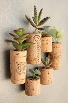 As rolhas podem virar uma mini horta (Foto: br.pinterest.com.br)