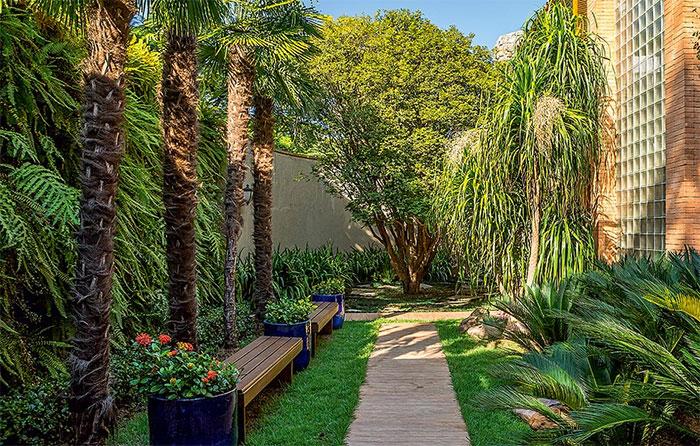 """As palmeiras moinho-de-vento ficam em frente a um jardim vertical de samambaias. """"Queria que o espaço fosse mais do que uma passagem. Coloquei dois bancos de madeira para criar uma área de contemplação"""", conta a paisagista Ana Paula Magaldi Edu Castello/Casa e Jardim"""
