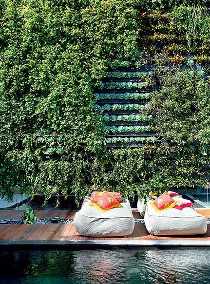 Da entrada, pode-se visualizar até a área externa, com piscina. A parede junto ao tanque recebeu jardim vertical projetado pela empresa Jardim Imaginário, com irrigação automatizada. Peperômias, cipós-uva e columeias são algumas das espécies Denilson Machado/MCA Estúdio